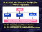 ip address allocation and assignment internet registries