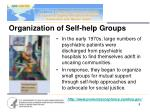organization of self help groups