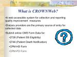 what is crownweb