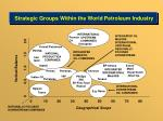 strategic groups within the world petroleum industry