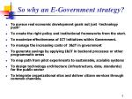 so why an e government strategy