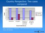 country perspective two cases compared