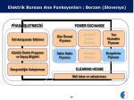 elektrik borsas ana fonksyonlar borzen slovenya