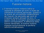 fusione motoria