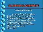 glomerulonefriti33