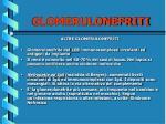 glomerulonefriti41