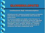 glomerulopatie10