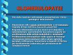 glomerulopatie11