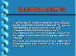 glomerulopatie7