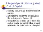 a project specific risk adjusted cost of capital