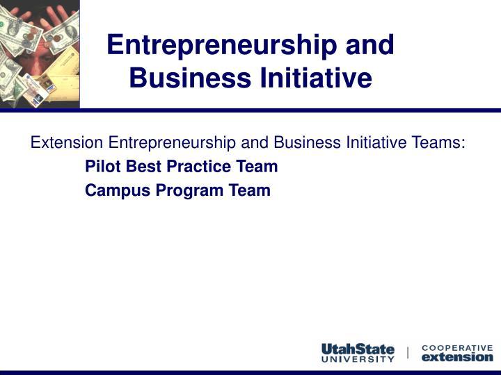 Entrepreneurship and business initiative3