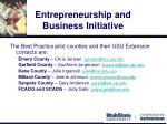 entrepreneurship and business initiative6