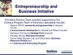 entrepreneurship and business initiative8