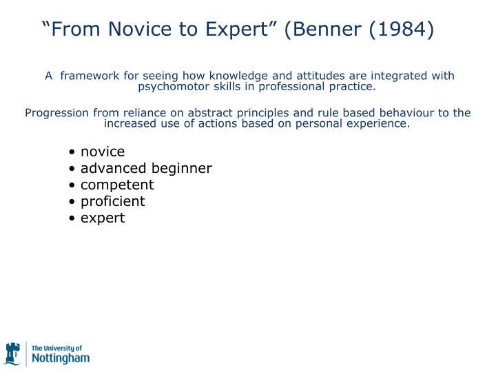 novice to expert benner