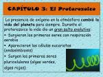 cap tulo 3 el proterozoico45