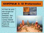 cap tulo 3 el proterozoico46