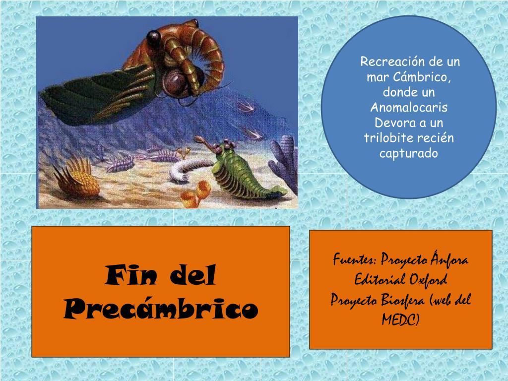 Ppt La Historia De La Tierra I Powerpoint Presentation