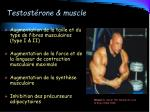 testost rone muscle