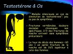 testost rone os