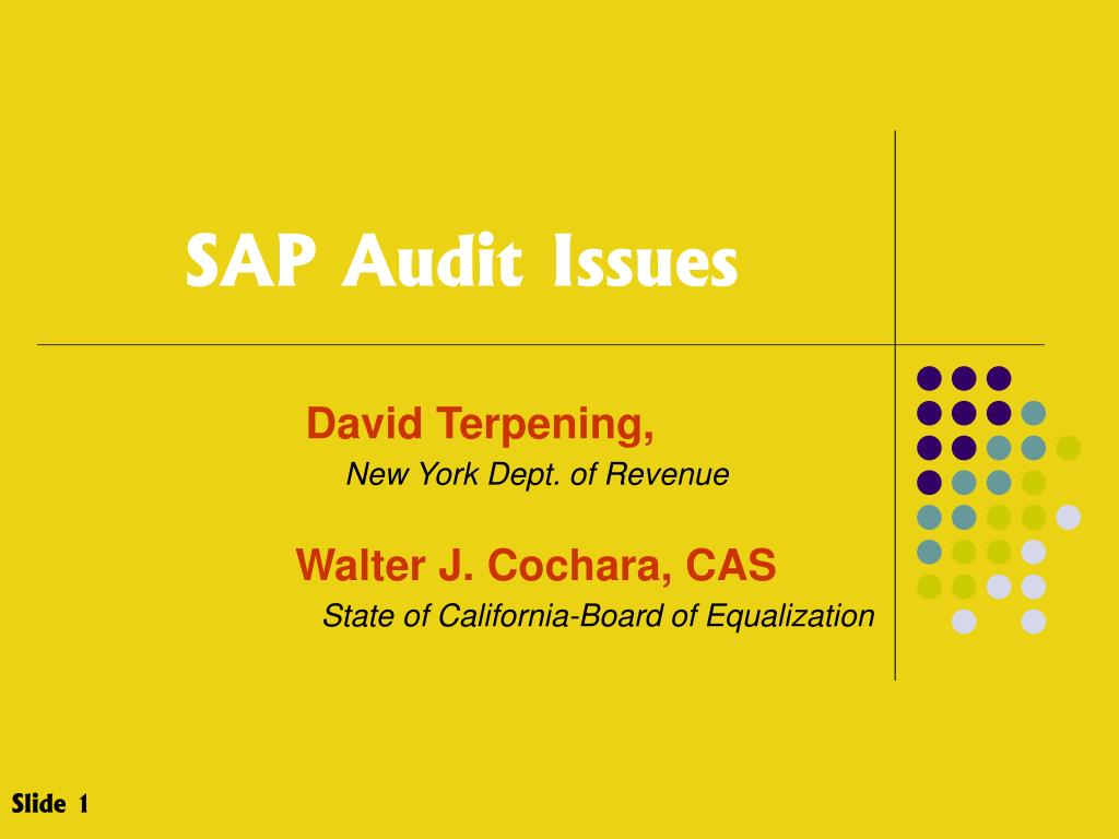 PPT - SAP Audit Issues PowerPoint Presentation - ID:222819