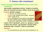 5 nasiona ro lin str czkowych