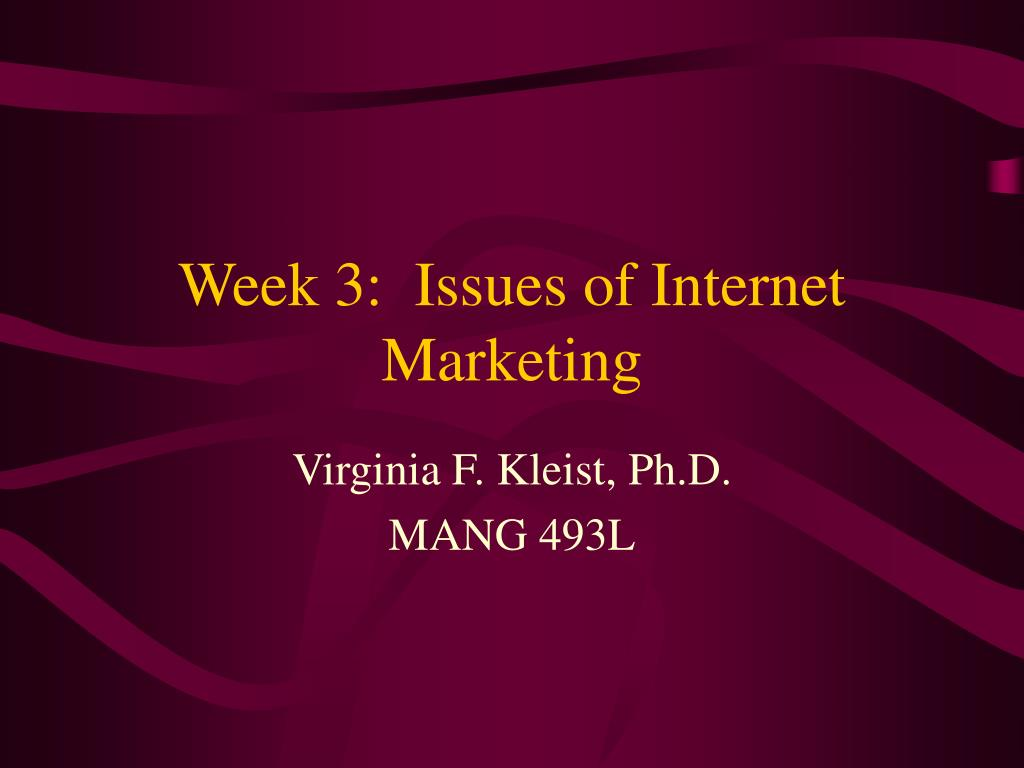 week 3 issues of internet marketing l.