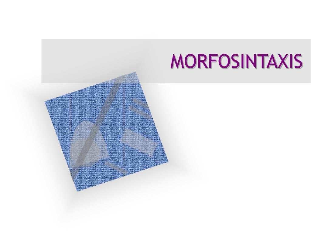 morfosintaxis l.