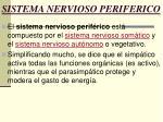 sistema nervioso periferico32