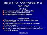 building your own website pros and cons
