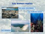 les biomes marins