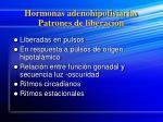 hormonas adenohipofisiarias patrones de liberaci n