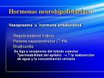 hormonas neurohipofisiarias 1