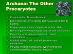 archaea the other procaryotes