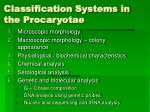 classification systems in the procaryotae12