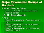 major taxonomic groups of bacteria