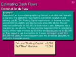 estimating cash flows22