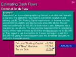 estimating cash flows23