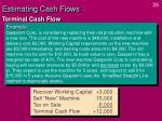 estimating cash flows24