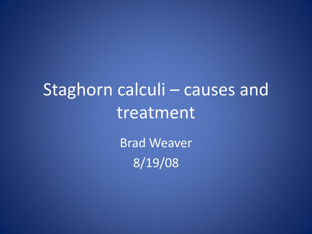 staghorn calculi causes and treatment l.