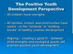 the positive youth development perspective