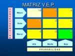 matriz v e p