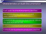 characteristics of audit documentation