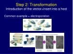 step 2 transformation