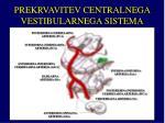 prekrvavitev centralnega vestibularnega sistema