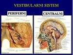 vestibularni sistem