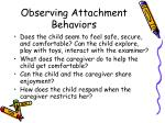 observing attachment behaviors