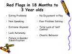 red flags in 18 months to 3 year olds