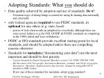 adopting standards what you should do