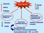 reajustes inmunol gicos
