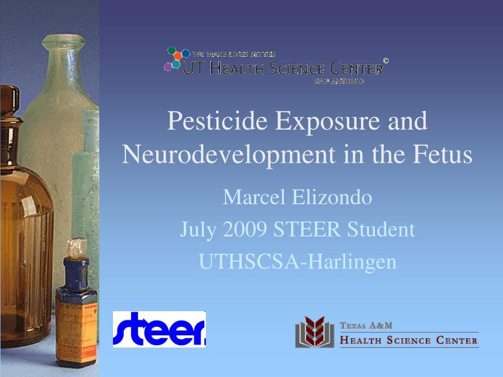 pesticide exposure and neurodevelopment in the fetus l.